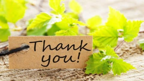 """Top 10 Most Common Expressions to Say """"Thank You"""" in English"""