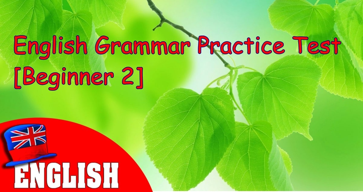 English Grammar Practice Test [Beginner 2] 14