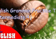 English Grammar Practice Test Intermediate 4