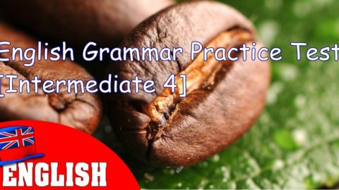 English Grammar Practice Test [Intermediate 4]
