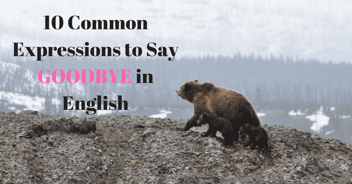 10 Common Expressions to Say GOODBYE in English 13