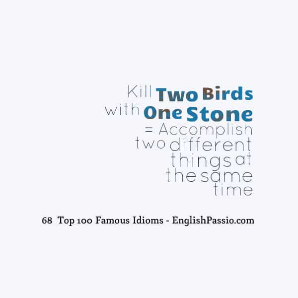 top most common idioms in english fluent land  idiom 68 kill two birds one stone