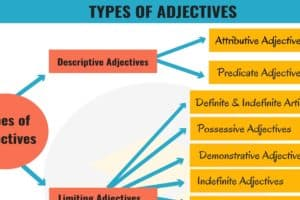 Types of Adjectives in English Grammar 5