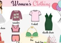 Women's Clothing Vocabulary.