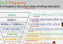 What are Adverbs of Frequency in English? 5