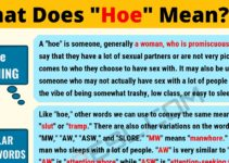 HOE Meaning: What Does HOE Mean? 9