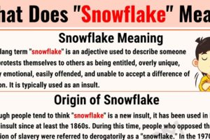 Snowflake Meaning: The Definition of the Useful Slang Term 'Snowflake' 7