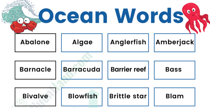 Oceans Marine Vocabulary Word List: Useful Ocean Words with Examples and Pictures 1