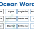 Oceans Marine Vocabulary Word List: Useful Ocean Words with Examples and Pictures 55