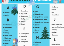Winter Vocabulary | Useful List Of Words About Winter with pictures 3
